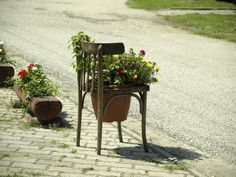 How to recycle an old chair? Photography Website, Earn Money, My Photos, Planter Pots, Recycling, Chair, Recyle, Chairs, Repurpose