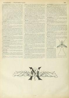 Wings of Whimsy: Noveau Larousse Illustré - N #vintage #french #dictionary #alphabet #capital #initial-kopi