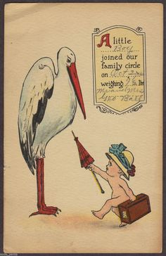 1914 Birth Announcement Antique Greetings Postcard Suitcase Baby to Stork | eBay