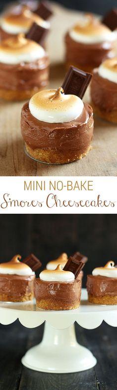 No Bake S'mores Mini Cheesecakes! Perfect summer dessert recipe!