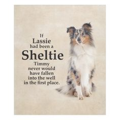 #Timmy's Blue Merle Sheltie Fleece Blanet - cyo customize design idea do it yourself diy