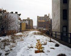 Joel Sternfeld Walking the High Line | Art Blart