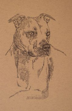 Dog art drawn entirely from the words American Pit Bull Terrier. See all the 110 breeds at: drawDOGS.com #dogart #PitBull #DOGS