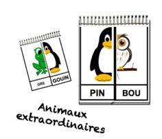 Les animaux extraordinaires - Gribouillage & Cie