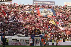 Bologna divisa tra comunicati pro americani e Ultras in attesa - il pallone gonfiato