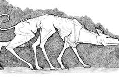 wolf perspective - Szukaj w Google