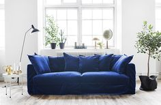 Trendenser.se - midnight blue velvet sofa in a Scandi, white-washed light-filled room.