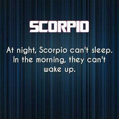 So damn true! Vampire hours! ♏