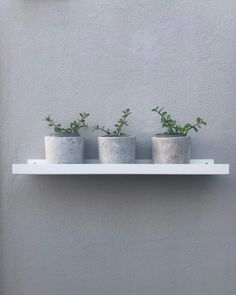 A trio of cement pots by Modern Crete Decor on a galvanised sleek shelf by Simply Steel. Both brands are situated in Somerset West, South Africa. Somerset West, Cement Pots, Crete, Furniture Decor, Floating Shelves, South Africa, Shelf, Craft Ideas, Modern