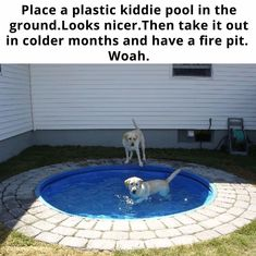 I know this shows it for dogs, but I thought this would be a good idea for our bigger pool. The tiles around it would be really nice so that we don't get grass in the pool when we get in. Deco Jungle, Kiddie Pool, Up House, Cool Ideas, House Goals, Home Hacks, My New Room, My Dream Home, Home Projects