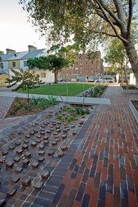 Bio retention cell Balfour Street Pocket Park | ArchitectureAU