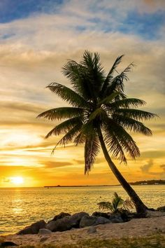 Sunset #incrediblesurfingphotos Dream Pictures, Lake Pictures, Beautiful Sites, Beautiful Places, Beautiful Scenery, Tropical Beaches, Beach Trip, Royal Photography, Nature Photography