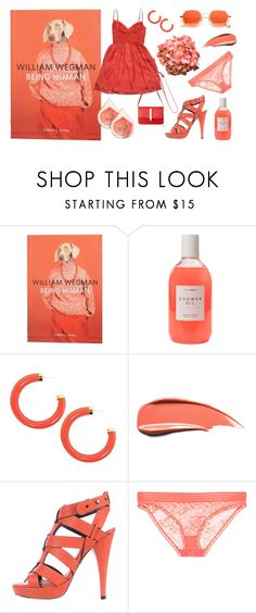 """Orange for Ophelia"" by tasteofbliss ❤ liked on Polyvore featuring Chronicle Books, Jessica Simpson, Kenneth Jay Lane, Barbara Bui and STELLA McCARTNEY"