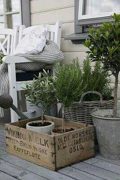 Brocante jardin