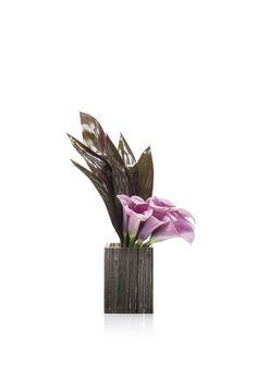 Collezioni: Floreali | Armani/Fiori