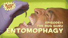 Interested in #ENTOMOPHAGY #EdibleBugs?  #BugginOut is here to guide you through the future of food!
