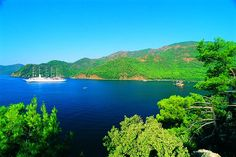 Köyceğiz is located at the junction of the Mediterranean and the Aegean Regions, at the km of the Muğla-Fethiye Highway. Citrus Garden, Visit Turkey, Turkey Holidays, Marmaris, Turkey Travel, Beautiful Places To Visit, Holiday Travel, Vacation Destinations, Natural Beauty