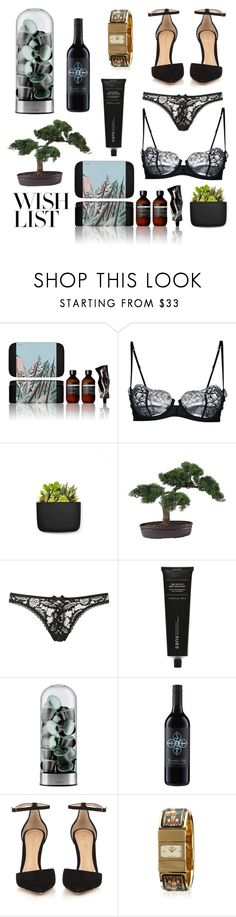 """""""#PolyPresents: Wish List"""" by braincontortion ❤ liked on Polyvore featuring Aesop, La Perla, Normann Copenhagen, Nearly Natural, Agent Provocateur, Sans [ceuticals], Eva Solo, Gianvito Rossi, Hermès and contestentry"""