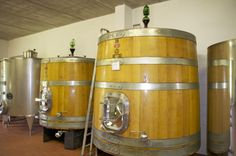 Vist and wine tasting at Podere Fornacella in Montalcino