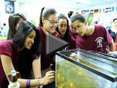 Project Reservoir The 7th grade students at Christa McAuliffe School, PS #28, in Jersey City are participating in Project Reservoir, a prog...