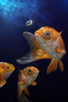 This goldfish painting was created for a Koi Festival at Lilypons Water Gardens in Adamstown, Maryland. Art Koi, Fish Art, Art Vampire, Vampire Knight, Koi Painting, Fish Tales, Watercolor Fish, Fish Drawings, Beautiful Fish