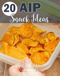 20 AIP Snack Ideas