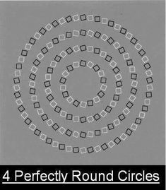 By David Ponce After an absence of a few weeks, here's the optical illusion column . Read more Optical Illusion Friday: There Are Four Circles On The Screen Types Of Optical Illusions, Illusions Mind, Optical Illusions Pictures, Illusion Pictures, Cool Illusions, Funny Illusions, Eye Tricks, Mind Tricks, Class Memes