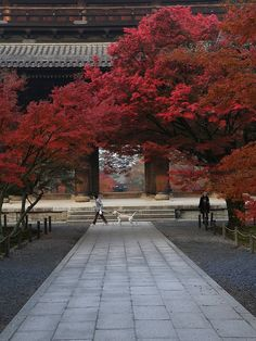 Nansen-ji, Japan