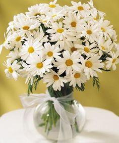 I want daisys