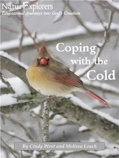 Coping with the Cold: How Animals Survive the Winter Season thoroughly covers the topics of adaptations, migration and hibernation through a huge selection of outdoor and indoor nature study ideas!