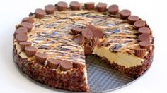 A creamy peanut butter cheesecake with a crispy chocolate crust, drizzled with even more chocolate and peanut butter!