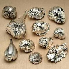 Grab all those extra shells and spray them with silver metallic paint and you get these amazing decorations!