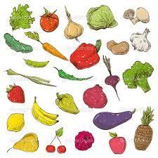 Картинки по запросу hand drawn vegetables