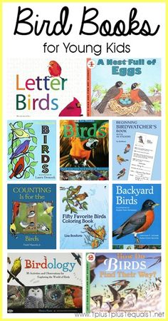 ideas for bird crafts preschool nature study Bird Crafts Preschool, Preschool Books, Preschool Science, Preschool Kindergarten, Preschool Ideas, Teaching Ideas, Bird Book, Bird Theme, Thing 1
