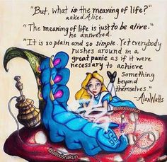 Funny Art Quotes Perspective 43 New Ideas Alice Quotes, Art Quotes Funny, Disney Quotes, Movie Quotes, Book Quotes, Inspirational Quotes, Funny Art, Funny Memes, Alice And Wonderland Quotes
