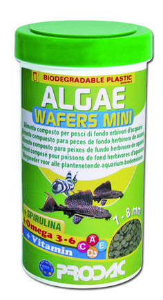 ALGAE WAFERS MINI a food for bottom 3 & 6 and for all Another new product at launch at Come to see @ our booth Halle Stand 306 Biodegradable Plastic, Biodegradable Products, Aquarium Fish Food, New Product, Product Launch, Omega 3, Halle, Fish Recipes, Coffee Cans