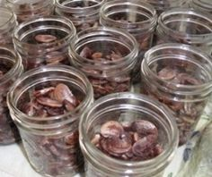 canning dried beans...and other great self reliance skills for the garden and kitchen