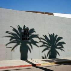 Minimal Photographs Of Los Angeles By Sinziana Velicescu – iGNANT.de