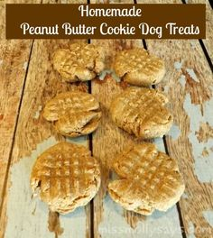 Homemade Peanut Butter Cookie Dog Treat Recipe  Dog treats are fun to make, and of course your pooch will love them
