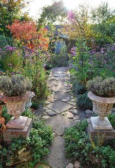 Garden pathway with diagonal pavers and stones in between