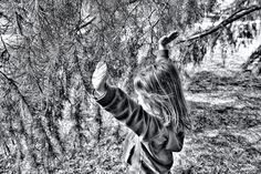 Atrapada en el arbol
