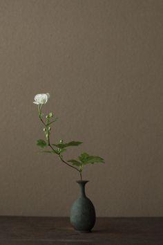 Flower arrangement by Kawase Toshiro