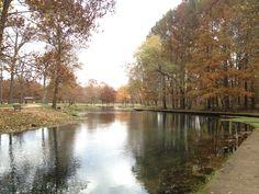 Maramec Springs near St. James, MO