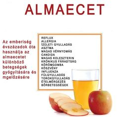 Életmód cikkek : Zöldség és gyümölcsök hatásai Herbal Remedies, Health Remedies, Natural Remedies, Healthy Drinks, Healthy Snacks, Healthy Recipes, Nutrition, Eating Well, Natural Health
