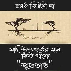 Good Morning Beautiful Gif, Free Good Morning Images, Good Morning Photos, Good Morning Gif, Bengali Poems, Bangla Love Quotes, Morning Quotes, Amazing Nature, Real Life