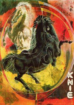 Animalarium: The Magic Ring