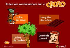 Un QCM pour tester vos connaissances sur le cacao, ses produits dérivés et ses vertus.