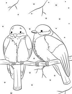 ausmalbilder winter | coloriage, oiseaux, colorier