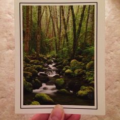 Photo by heatherdnewton April 10: {Photo of a photo} A stream in the Olympic Mountains by my cousin-in-law Jeremy Jonkman up in Seattle.  Love, love, love his nature photography!  This is from my stash of blank inside greeting cards I bought from him. ✨✨ #theidearoom