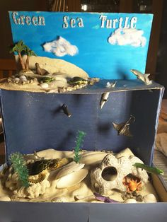 Above/below water diorama. Ocean Diorama, Diorama Kids, Sea Turtle Life Cycle, Sea Turtle Art, Ocean Projects, Animal Projects, Ecosystems Projects, Turtle Facts, Turtle Habitat